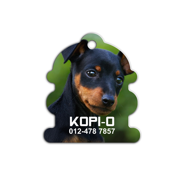 Hydrant Shape Pet Tag ( HY-Photo )